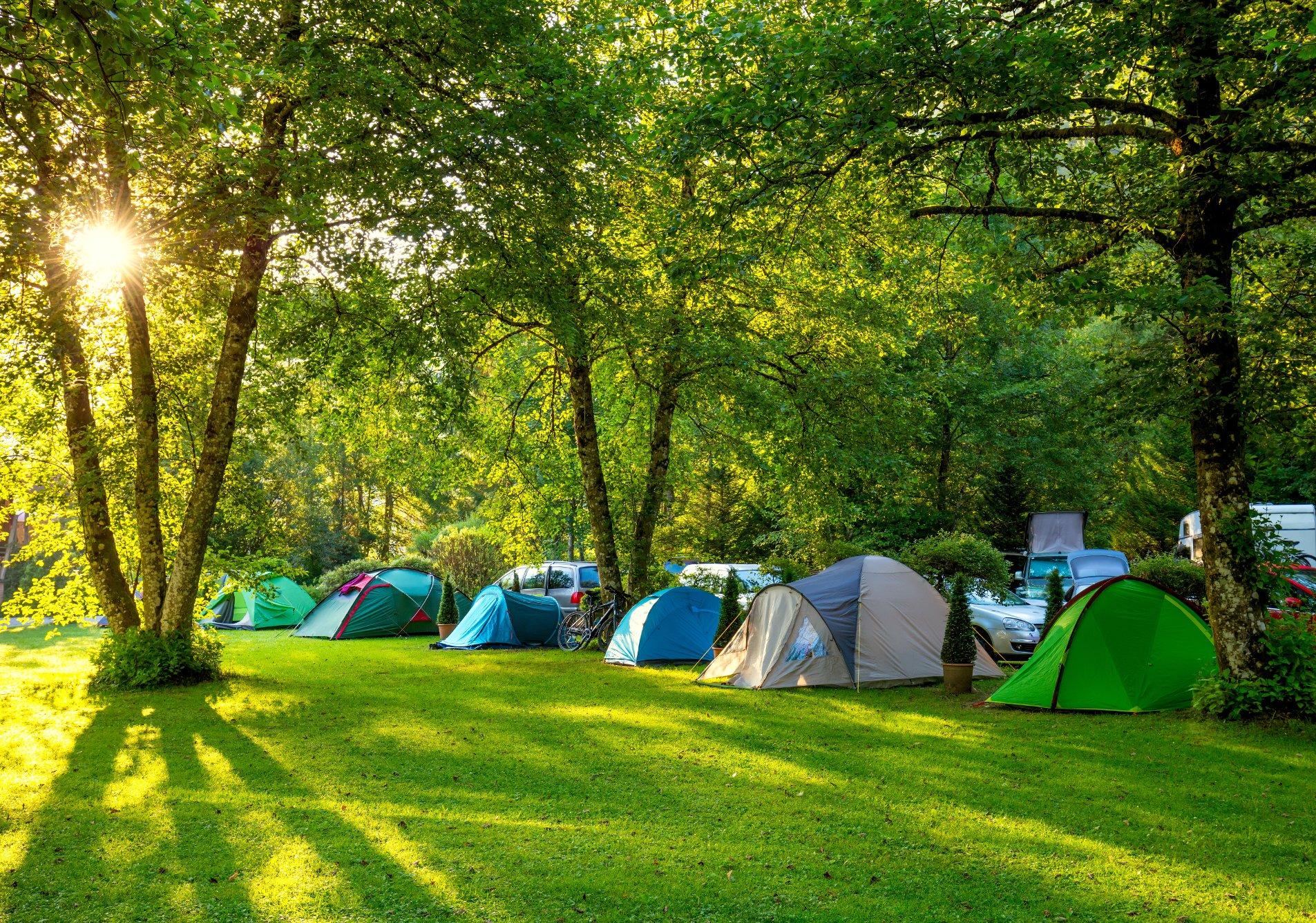 comment d u00e9nicher un emploi saisonnier de camping